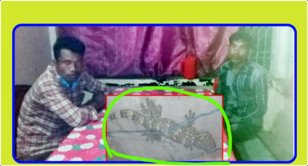 তক্ষকসহ ২ জনকে আটক করে ছেড়ে দিলো শাহপরান ফাড়ি পুলিশ,গায়েব তক্ষক