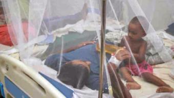২৪ ঘণ্টায় ডেঙ্গু আক্রান্ত হয়ে আরও ২১৩ জন হাসপাতালে